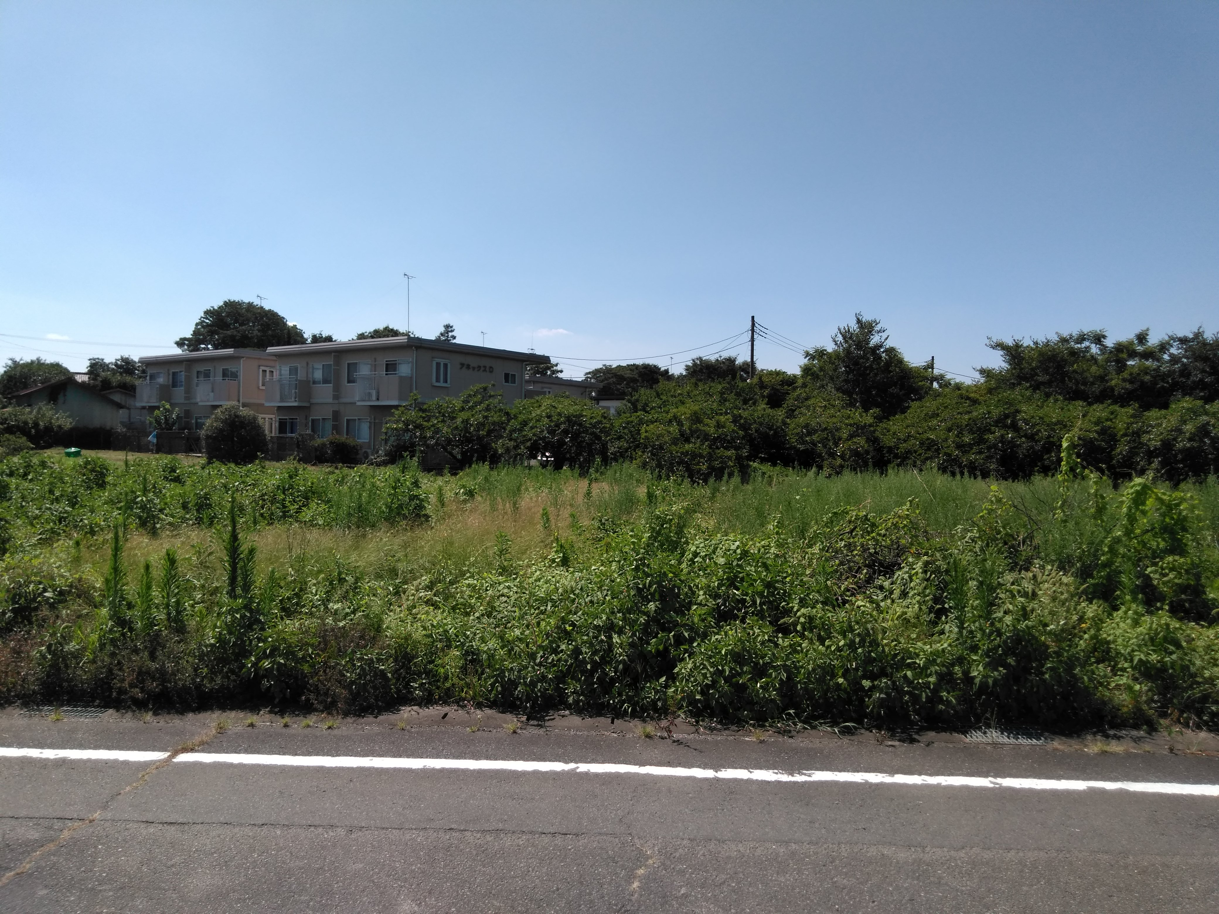 【売地】前橋市東大室町 ①区画
